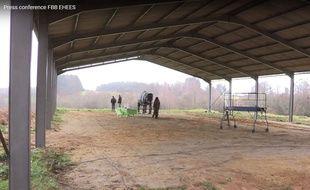 La fondation Brigitte Bardot apporte un soutien financier de 350.000 euros au projet de maison de retraite pour éléphants.