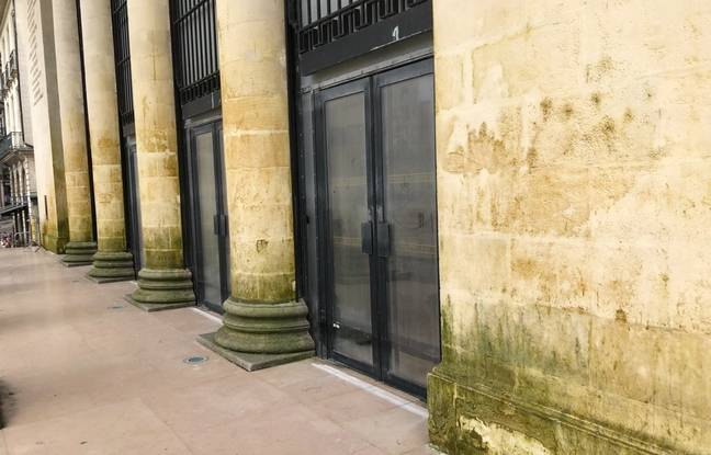 Taches et verdissements sur la façade de l'opéra Graslin à Nantes, après l'œuvre Rideau d'eau.