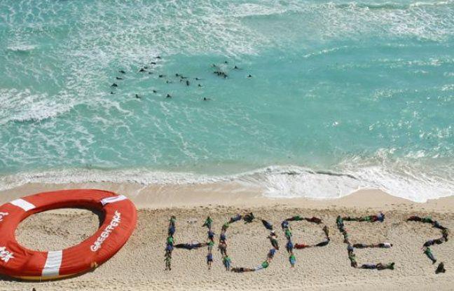 Des militants de Greenpeace lors du sommet de Cancun sur le climat, le 10 décembre 2010.