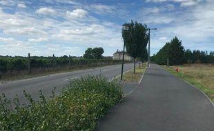 Le site sur lequel la construction du collège est envisagée n'est qu'à 50 mètres des vignes du Château Clément-Pichon.