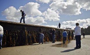 Un quai en provenance du Japon, balayé par le tsunami de mars 2011, a échoué sur une plage de l'Oregon, aux Etats-Unis, en juin 2012.