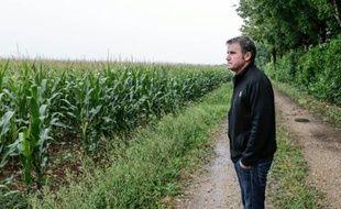 Paul François, agriculteur charentais reconnu victime d'un herbicide de Monsanto, observe ses champs de maïs à Bernac, le 28 juillet 2015
