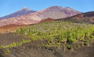 Les cratères du Teide évoquent des montagnes d'épices aux couleurs de l'Afrique.