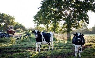 En France, l'agriculture est responsable de 21% des émissions de gaz à effet de serre (Ges) et l'élevage bovin est responsable à lui seul de plus de la moitié de ces émissions