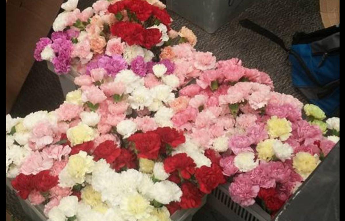 Un adolescent américain a acheté 900 fleurs pour en offrir une à chaque fille de son lycée pour la Saint-Valentin. – Hayden Godfrey / Facebook