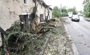 Des arbres sont tombés sur une maison, lors d'un violent orage survenu dans la nuit du 31 août au 1er septembre 2015.