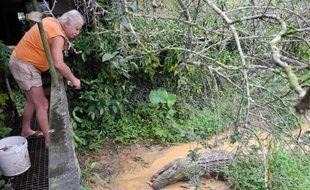 Des caïmans par dizaines, des tortues par centaines, des boas de toutes tailles et couleurs et... un jaguar: avec son élevage de crocodiles et autres reptiles de Guyane, l'Aveyronnais Jean-Pierre Austruy est le Samaritain des sauriens de la forêt amazonienne française.
