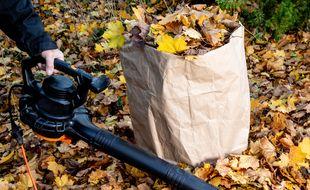 Pour vous aider à choisir, voici un comparatif des meilleurs souffleurs de feuilles électriques