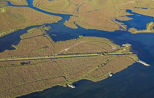 La Grande Maïre, dans le Biterrois, est une zone Natura 2000.