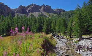 Créé le 18 août 1979, le parc national du Mercantour s'étend sur 1800 km2