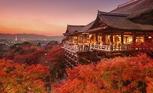 Le respect et la contemplation de la nature sont fortement ancrés dans la mentalité japonaise.
