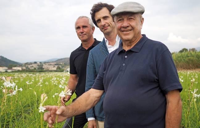 La récolte est supervisée par Fabrice Bianchi, Olivier Polge et Joseph Mul