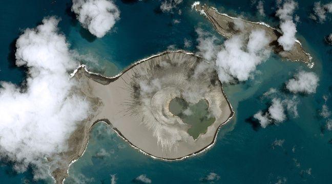 Surgie de l'eau il y a quatre ans, une nouvelle île accueille déjà la vie