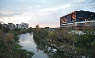 Le Lez, depuis le pont Zuccarelli, à Montpellier, où la drogue a été jetée.