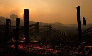 Les autorités ont promis de punir sévèrement les pyromanes qui seront poursuivis pour meurtre et encourront la prison à vie.