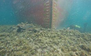 Des plongeurs ont inspecté la coque du cargo.