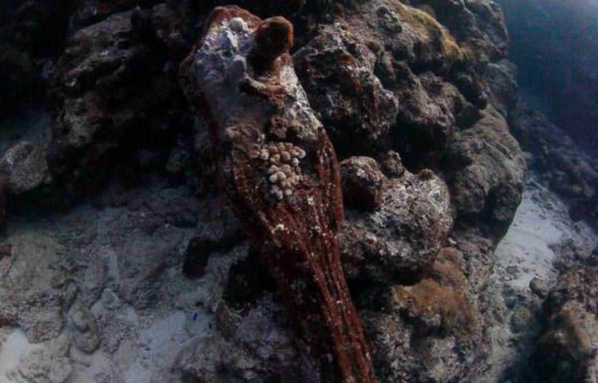 Des plongeurs ont découvert au large de Tonga, dans le Pacifique, l'épave d'un navire qui serait un bateau de pirates disparu au XIXe siècle avec à son bord un important trésor, ont indiqué jeudi les autorités locales. – Darren Rice afp.com