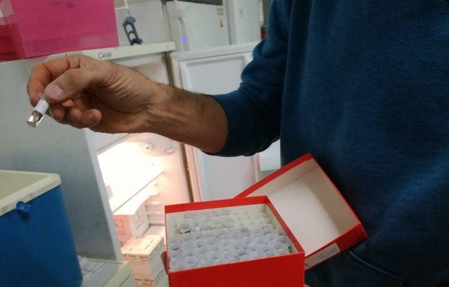 Un échantillon contenant une plume dans les mains de François Criscuolo à l'IPHC.