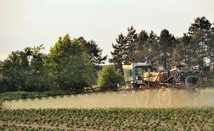 Un fermier utilise du pesticide sur un champ de pommes de terre, le 30 mai 2012 à Godewaersvelde