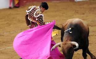 Mexican matador Joselito Adame performs a pass on a Fuerte Ymbro bull at the Plumacon arena in Mont-de-Marsan, southeastern France, during the festival of La Madeleine on July 18, 2014. AFP PHOTO / GAIZKA IROZ