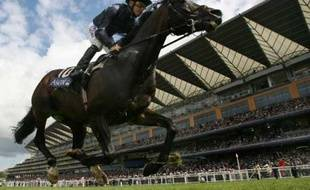 Tout ce cirque finit même par éclipser les performances des meilleurs chevaux du monde.   Conception : E. Drouard
