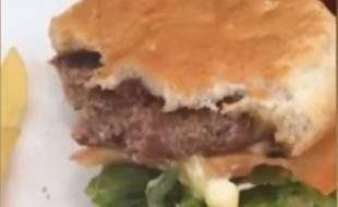 Capture d'écran d'une vidéo publiée par DTLPG le 3 mars 2015 sur Youtube montrant une chenille dans un hamburger.