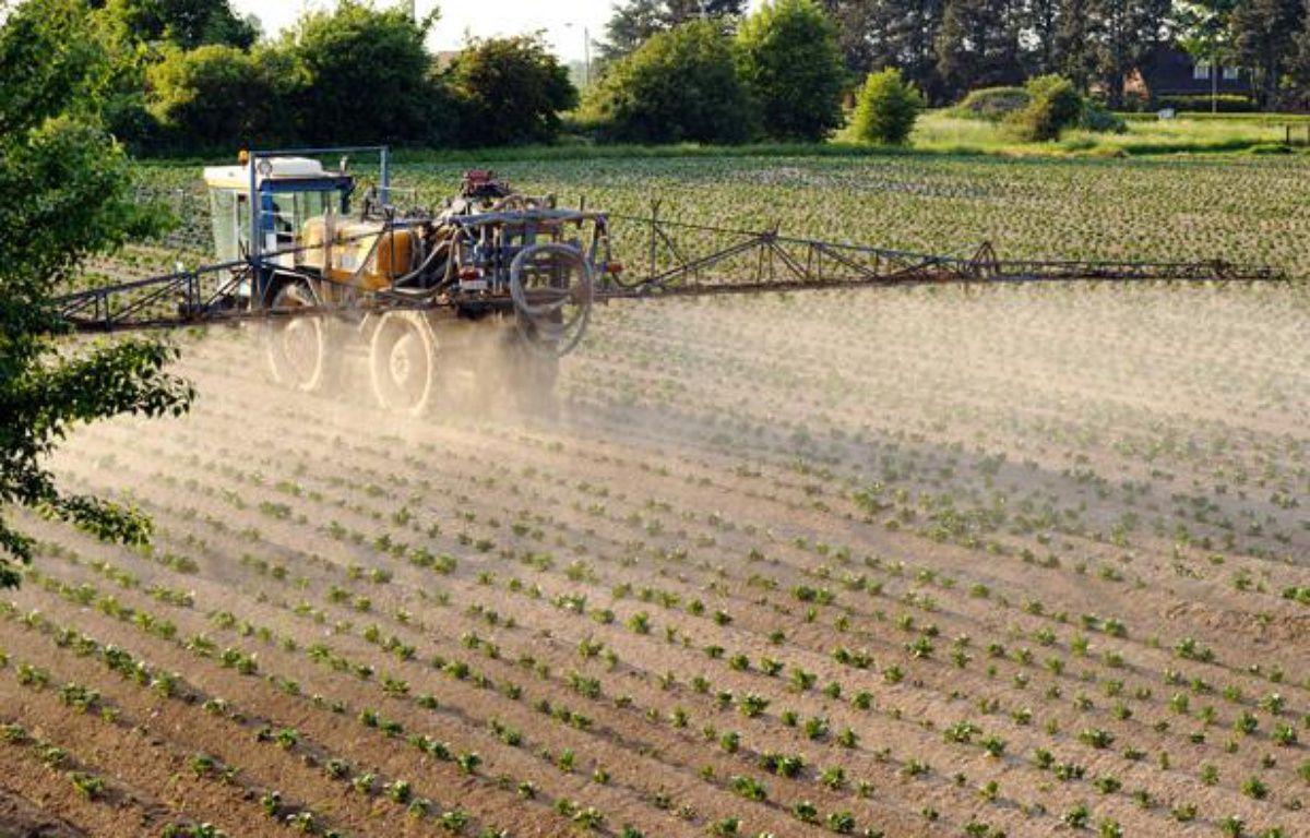 Un agriculteur pulvérise des pesticides sur des cultures dans le Nord de la France. – P.HUGUEN/AFP PHOTO