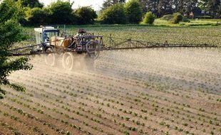 Un agriculteur pulvérise des pesticides sur des cultures dans le Nord de la France.