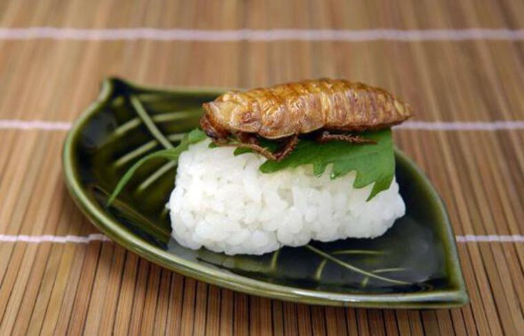 Un sushi d'insecte, à Tokyo, en 2008.