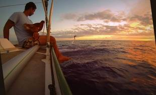 Guirec et sa poule Monique observent les dauphins qui accompagnent le bateau Yvinec dans l'Atlantique.