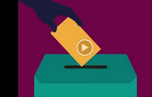 VIDEO. Sénatoriales: Le renouvellement du Sénat, comment ça marche?