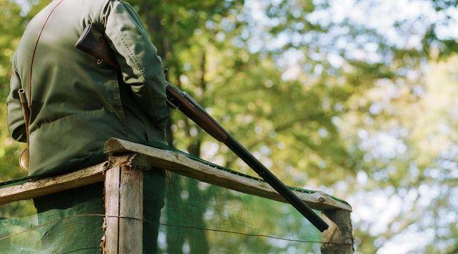 Un homme interpellé alors qu'il chassait en plein village en Bretagne