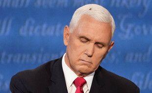 Une mouche s'est posée sur les cheveux de Mike Pence lors de son débat face à Kamala Harris, le 7 octobre 2020.