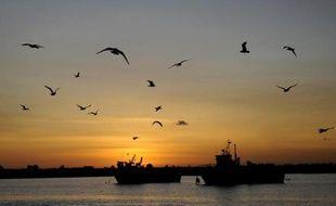 """Les ministres de la pêche de l'UE ont bouclé mardi, dans un délai record, un accord sur les quotas de capture pour 2014, salué par la Commission européenne et jugé """"satisfaisant et équilibré"""" par la partie française"""