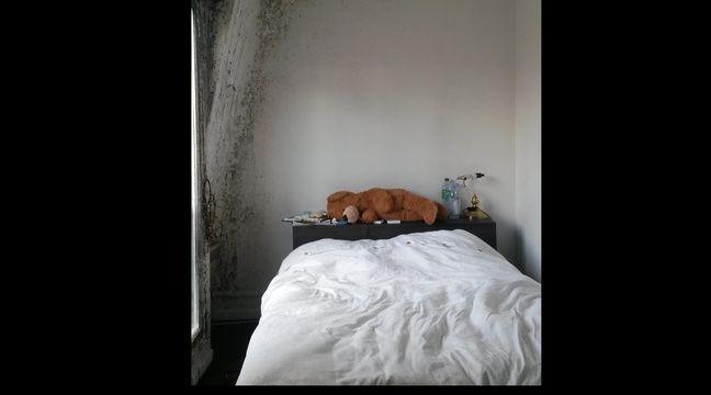 rapport de la fondation abb pierre depuis qu 39 on habite ici on est tout le temps malade. Black Bedroom Furniture Sets. Home Design Ideas