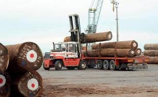 Arbres protégés coupés dans les forêts tropicales pour fabriquer meubles ou parquets: les importations de bois illégal persistent en France, même si elles régressent sous la pression des organisations écologistes et sous l'effet des changements dans l'industrie du bois.