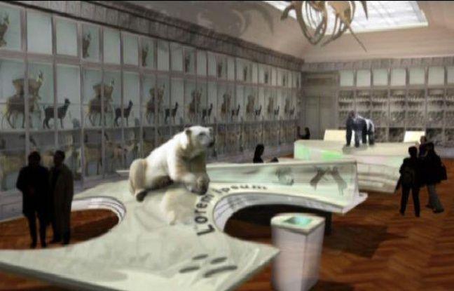 Image de synthèse du futur muséum d'histoire naturelle de Bordeaux
