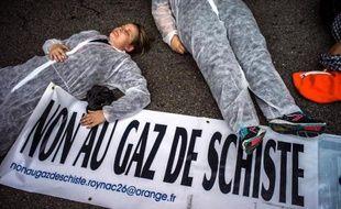 Manifestation contre l'exploitation du gaz de schiste à Montélimar le 13 octobre 2013.