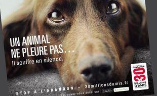 Une affiche de la nouvelle campagne de l'association 30 Millions d'Amis.
