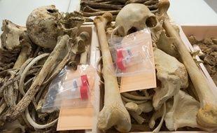 Au département d'anthropologie de l'Institut de recherche criminelle de la gendarmerie où ont été envoyés les ossements de Lauzès. Illustration.