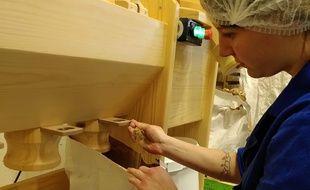 Lola Bonnin vérifie la qualité de la farine de drêche