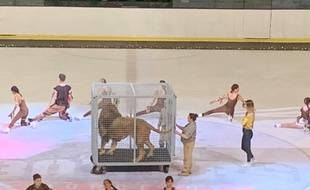 Un spectacle qui devait se produire avec un lion en cage sur la patinoire de Bordeaux a retiré l'animal