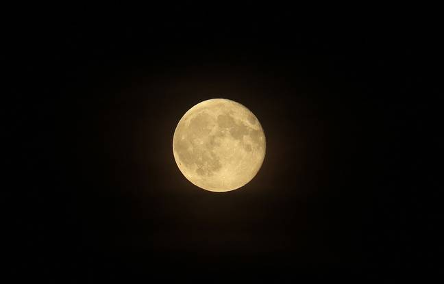 Illustration d'une nuit de pleine lune.