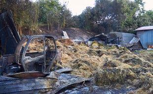 L'incendie a détruit le hangar à foins du zoo de La Palmyre.