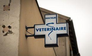 Une croix vétérinaire, à Suresnes dans les Hauts-de-Seine.