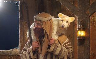 La chienne de Peter Thorpe en mouton (2010).