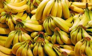 Bananes, illustration.
