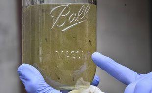 De l'eau contenant sans doute des microplastiques (illustration).