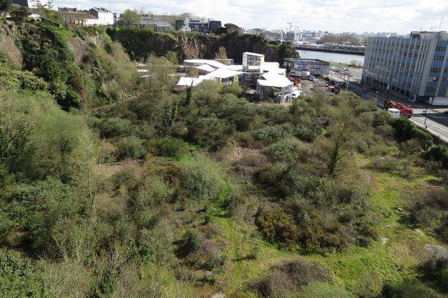 Le site de la carrière Miséry. Au premier plan, là où doit voir le jour le jardin. Au second plan, là où doit être implanté l'Arbre aux hérons.