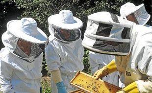 Cinquante personnes ont suivi les cours d'apiculture pendant six mois.